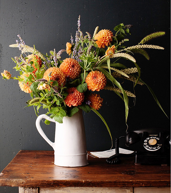 Fall Botanicals | Ty Pennington