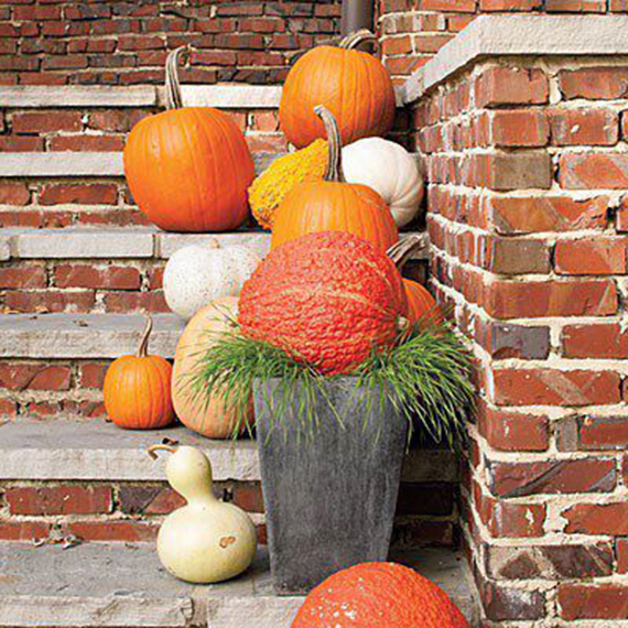 Ty Pennington | Décor Dos: Using Gourds in Your Home