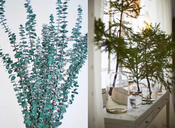 Collect eucalyptus branches or other greenery fresh from your yard + other holiday decorating tips from David Brian Sanders | Ty Pennington
