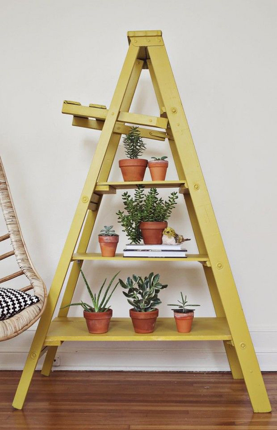 Repurpose an old ladder to display potted plants | Ty Pennington