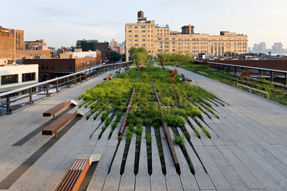 New York's High Line Park | Go Green: Biophilic Cities and Communities by Ty Pennington