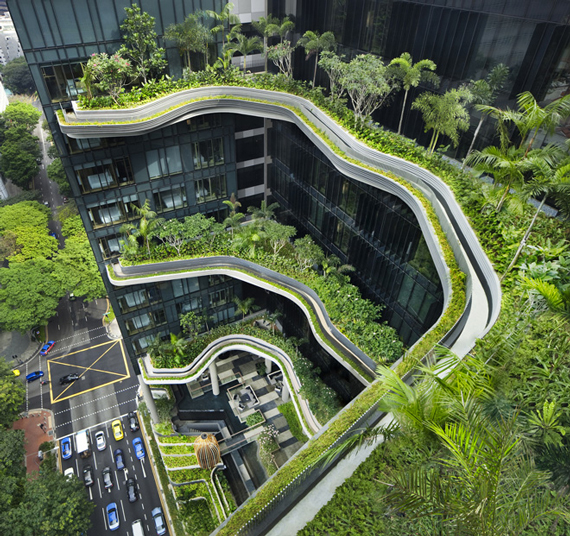 Biophilic Design Models | Go Green: Biophilic Cities and Communities by Ty Pennington