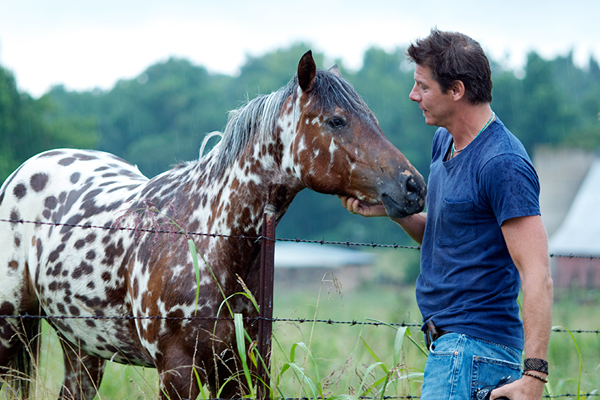 On the Farm | Ty Pennington